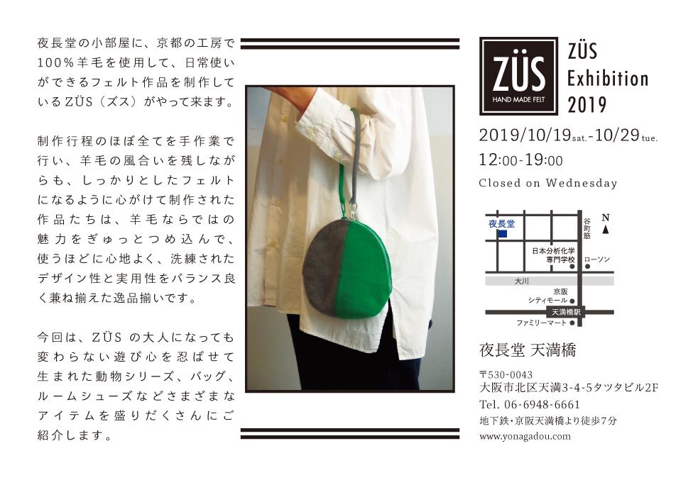 ZUS2019DM_B